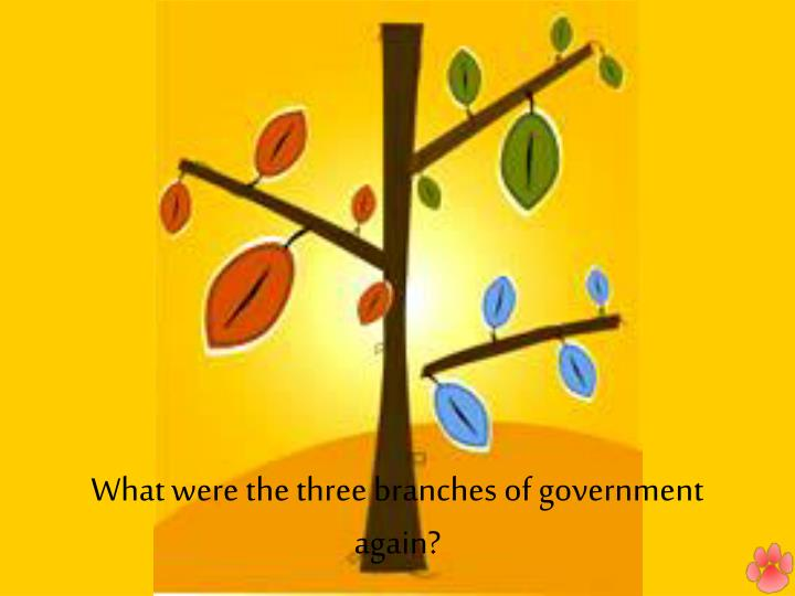 What were the three branches of government again?