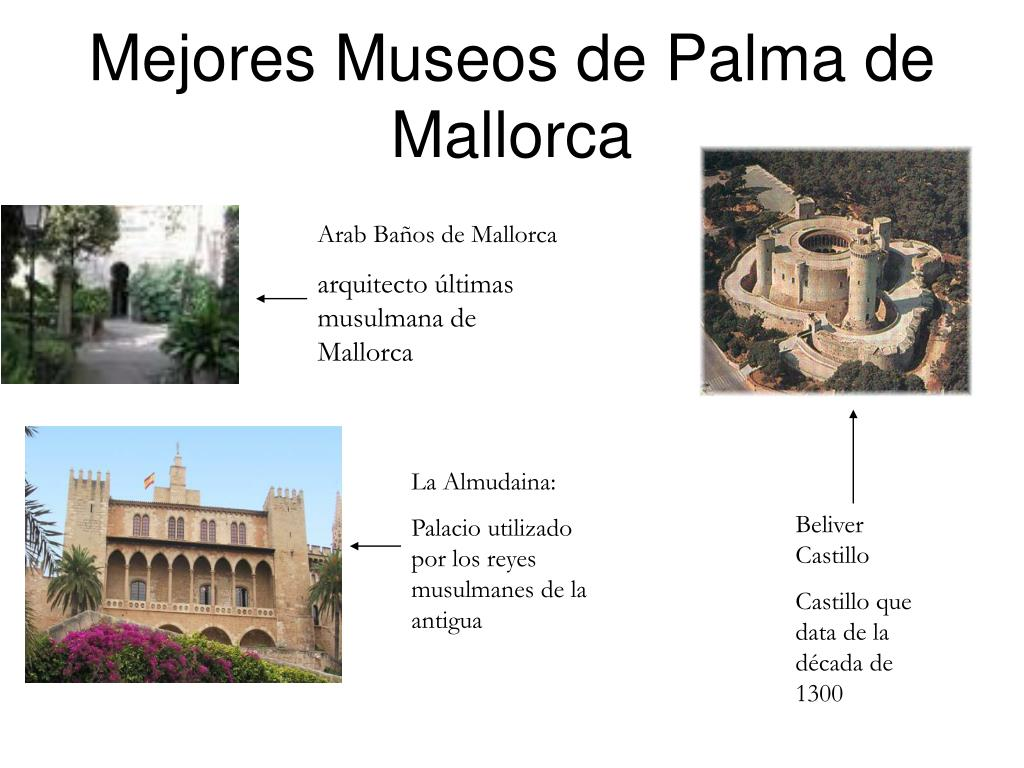 Mejores Museos de Palma de Mallorca