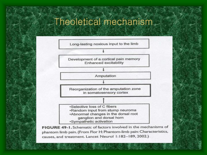 Theoletical mechanism