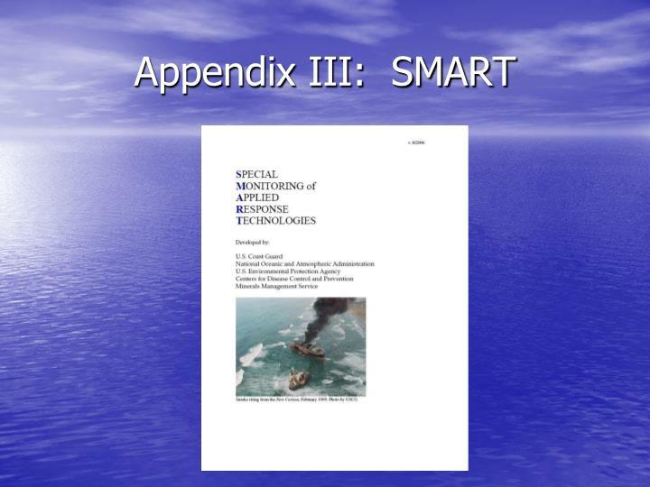Appendix III:  SMART