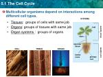 multicellular organisms depend on interactions among different cell types