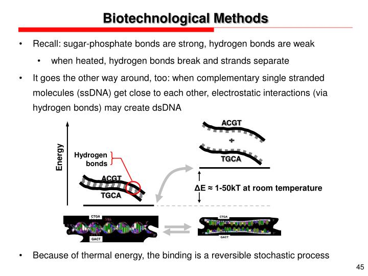Biotechnological Methods