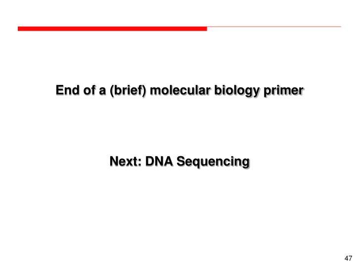 End of a (brief) molecular biology primer