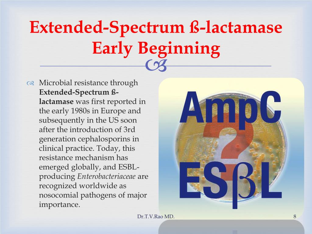 Extended-Spectrum