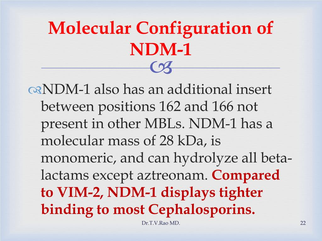 Molecular Configuration of NDM-1