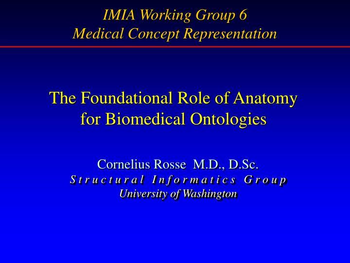 IMIA Working Group 6