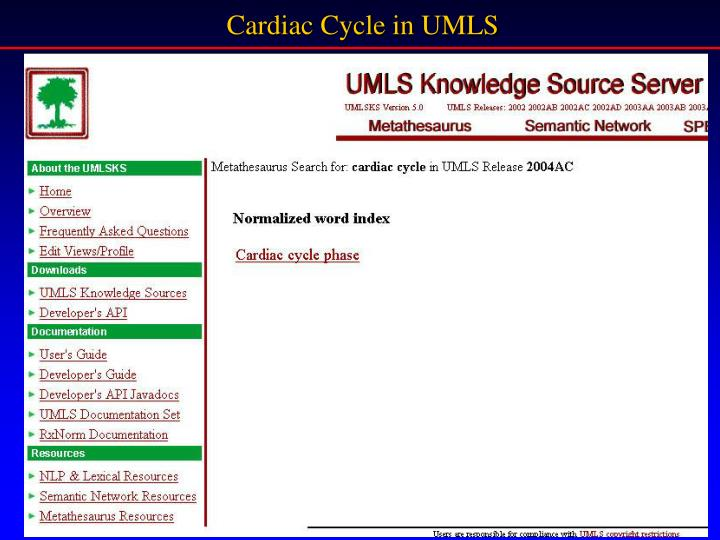 Cardiac Cycle in UMLS
