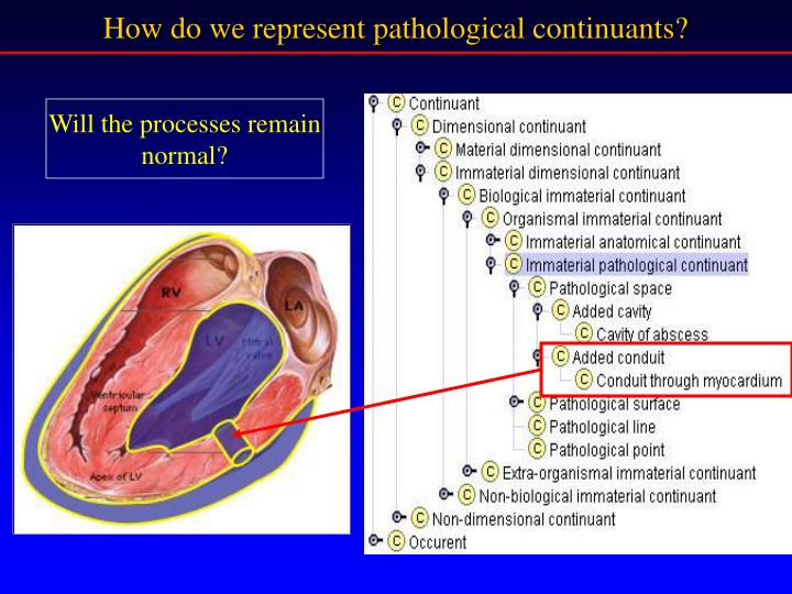 How do we represent pathological continuants?