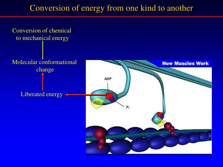 Conversion of energy from one kind to another
