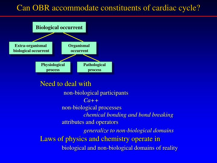 Can OBR accommodate constituents of cardiac cycle?
