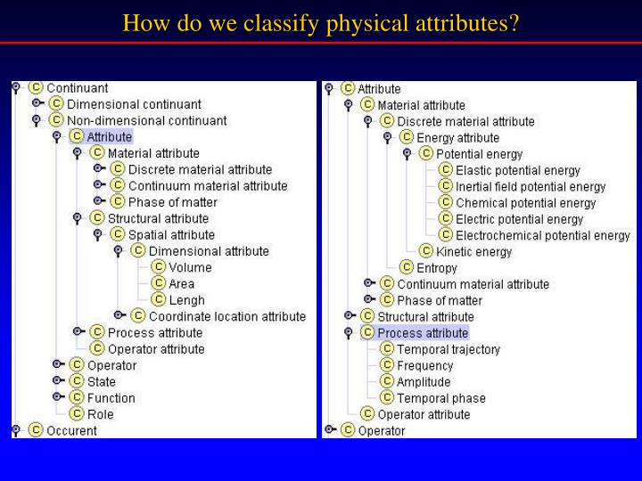 How do we classify physical attributes?