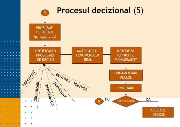 Procesul decizional