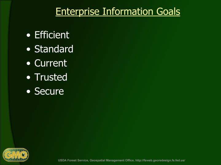 Enterprise Information Goals