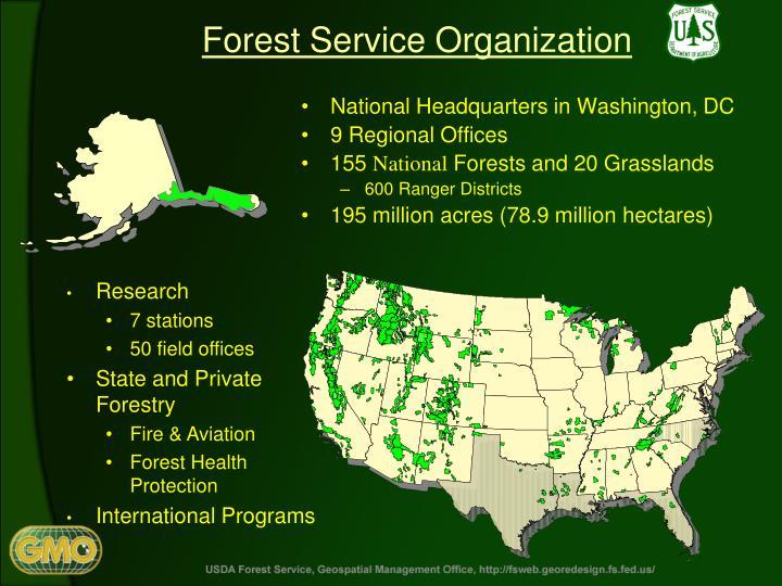 Forest Service Organization