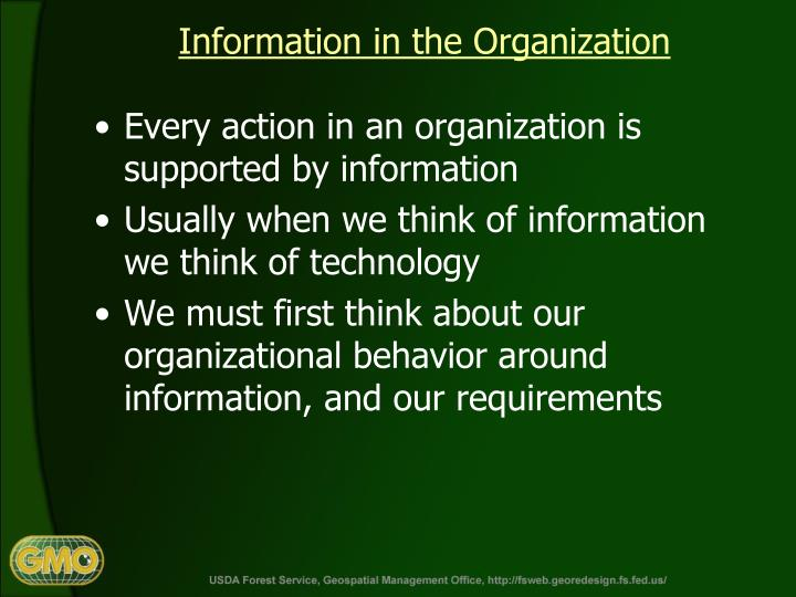 Information in the Organization