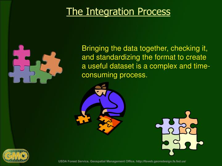 The Integration Process