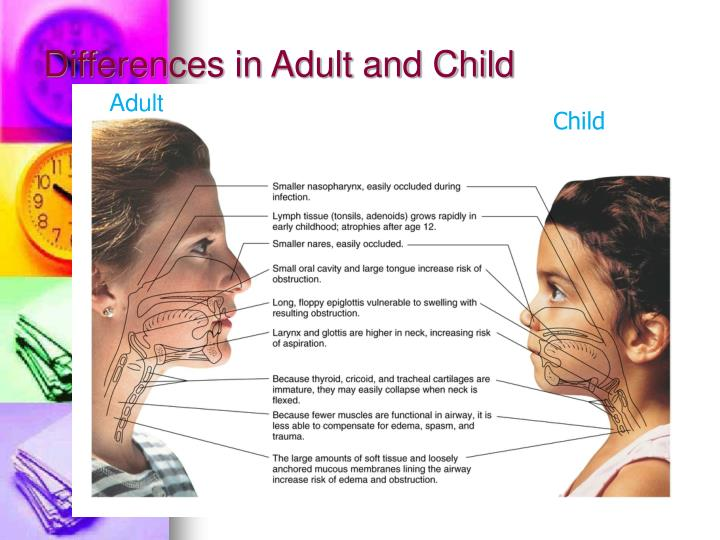 Differences in adult and child