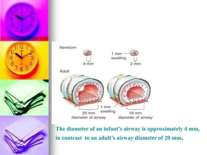 The diameter of an infant's airway is approximately 4 mm, in contrast  to an adult's airway diameter of 20 mm