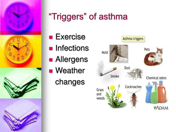 """Triggers"" of asthma"