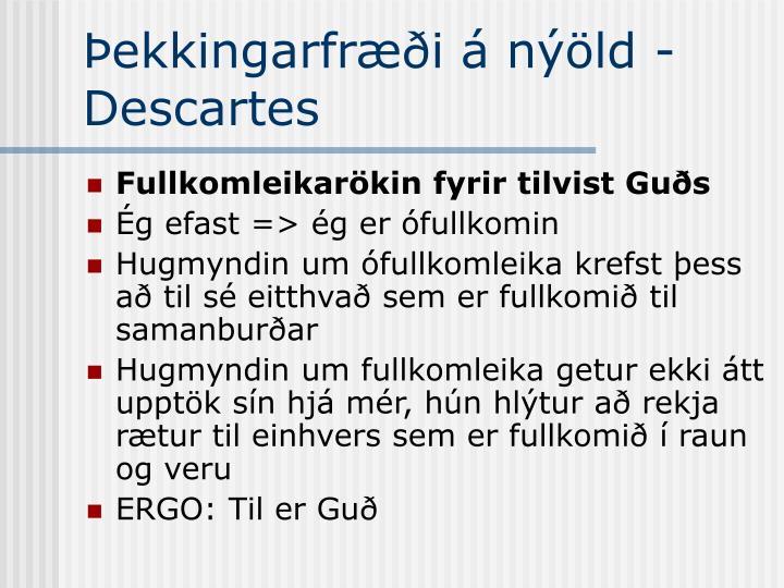 Þekkingarfræði á nýöld - Descartes