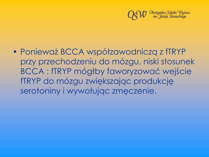 Poniewa BCCA wspzawodnicz z fTRYP przy przechodzeniu do mzgu, niski stosunek BCCA : fTRYP mgby faworyzowa wejcie fTRYP do mzgu zwikszajc produkcj serotoniny i wywoujc zmczenie.
