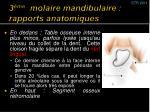 3 me molaire mandibulaire rapports anatomiques1