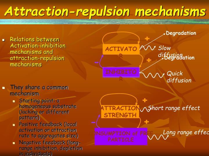 Attraction-repulsion mechanisms