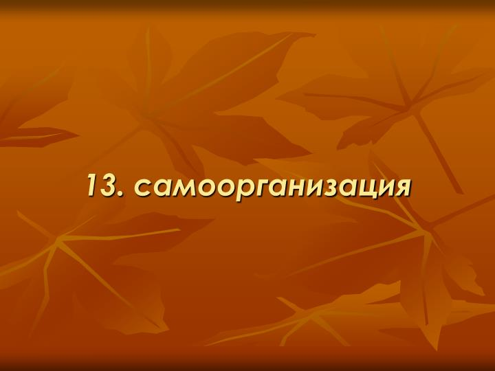 13. самоорганизация