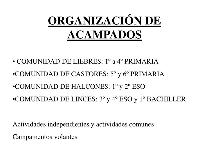 ORGANIZACIÓN DE ACAMPADOS