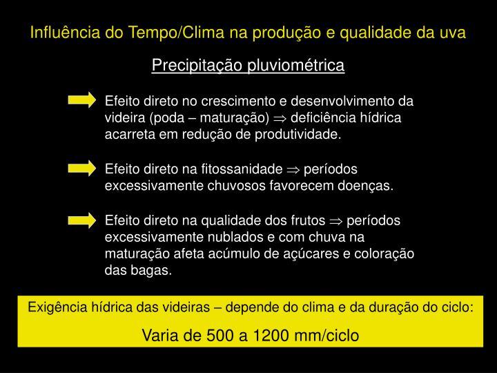 Influência do Tempo/Clima na produção e qualidade da uva