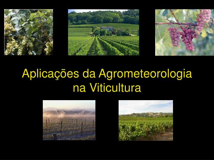 Aplicações da Agrometeorologia na Viticultura