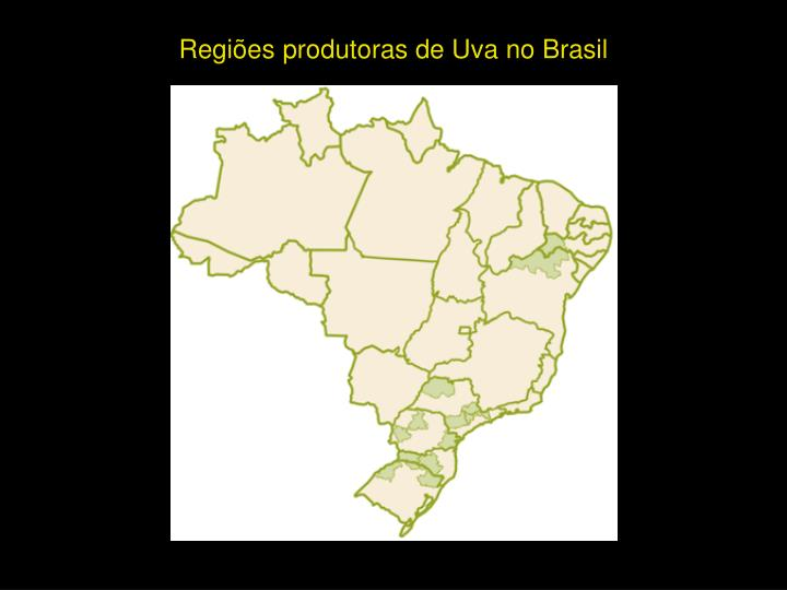 Regiões produtoras de Uva no Brasil