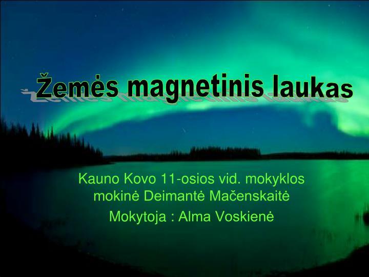 Žemės magnetinis laukas