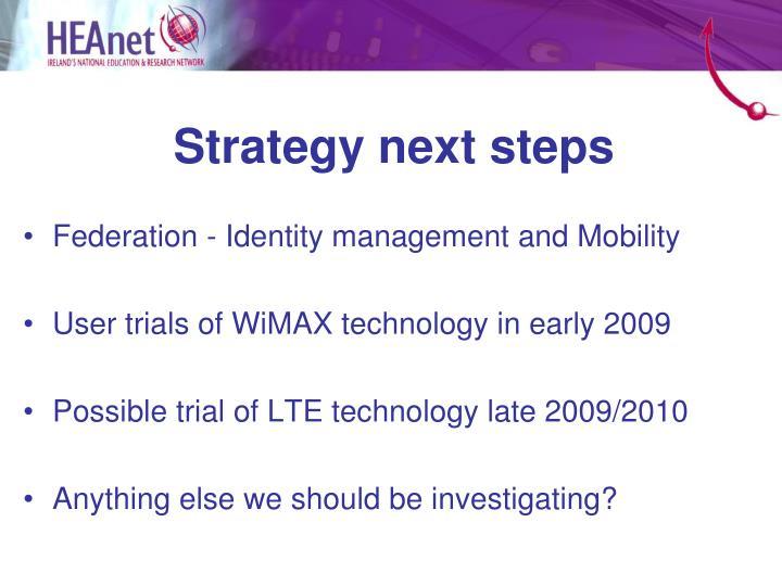 Strategy next steps