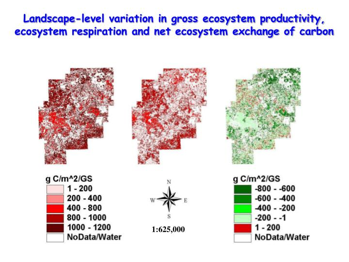 Landscape-level variation in gross ecosystem productivity, ecosystem respiration and net ecosystem exchange of carbon