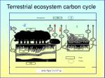 terrestrial ecosystem carbon cycle