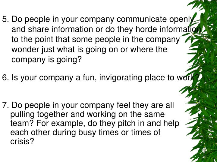5. Do people in your company communicate openly