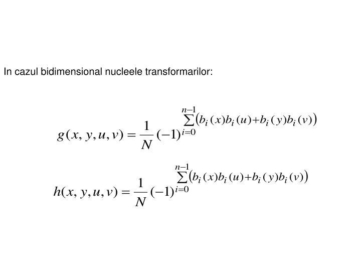 In cazul bidimensional nucleele transformarilor: