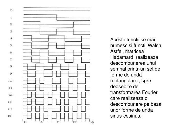 Aceste functii se mai numesc si functii Walsh. Astfel, matricea Hadamard  realizeaza descompunerea unui semnal printr-un set de forme de unda rectangulare , spre deosebire de transformarea Fourier care realizeaza o descompunere pe baza unor forme de unda sinus-cosinus.