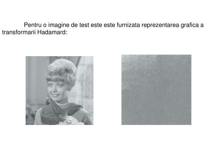 Pentru o imagine de test este este furnizata reprezentarea grafica a transformarii Hadamard: