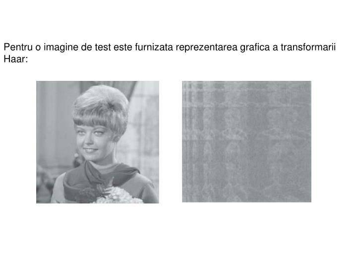 Pentru o imagine de test este furnizata reprezentarea grafica a transformarii Haar: