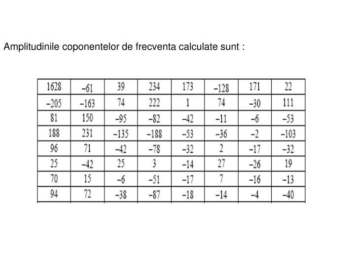 Amplitudinile coponentelor de frecventa calculate sunt: