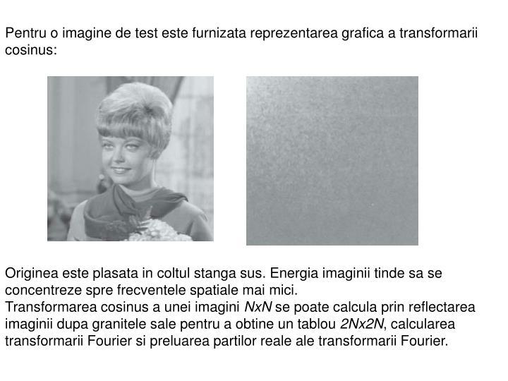 Pentru o imagine de test este furnizata reprezentarea grafica a transformarii cosinus: