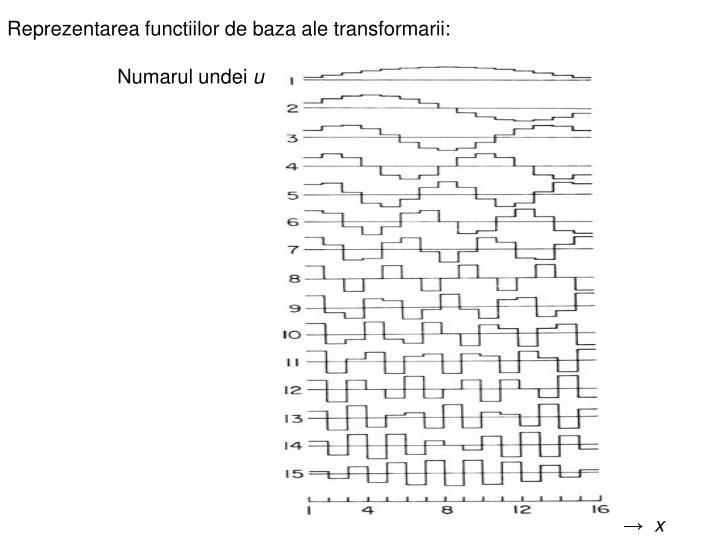 Reprezentarea functiilor de baza ale transformarii: