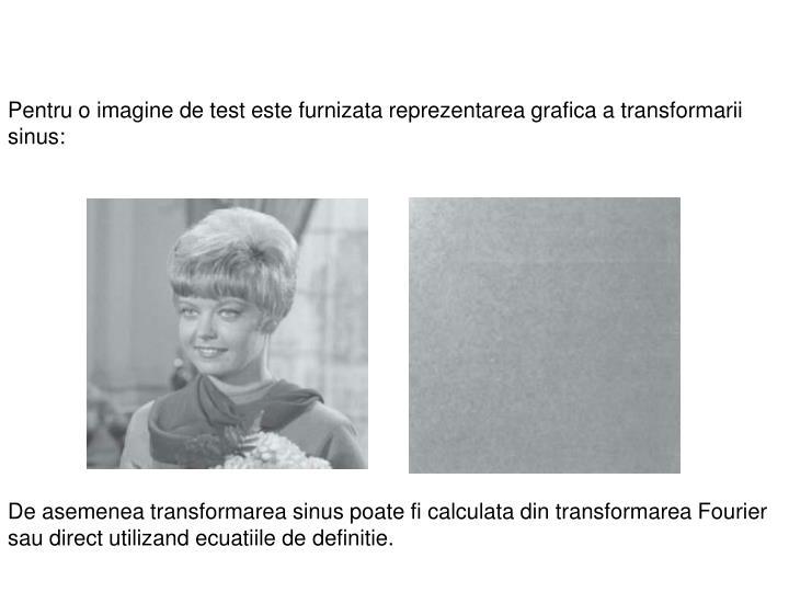 Pentru o imagine de test este furnizata reprezentarea grafica a transformarii sinus: