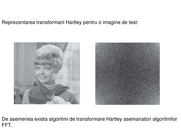 Reprezentarea transformarii Hartley pentru o imagine de test: