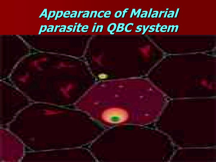 Appearance of Malarial parasite in QBC system
