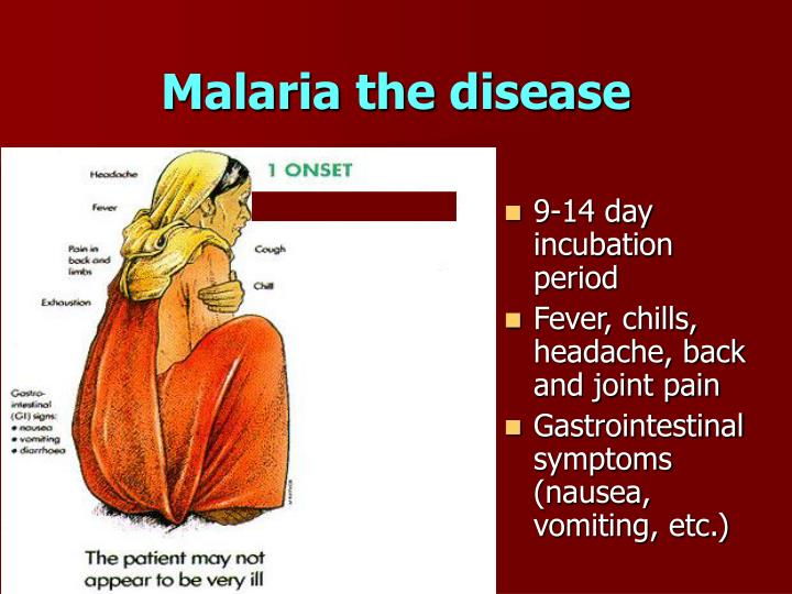 Malaria the disease