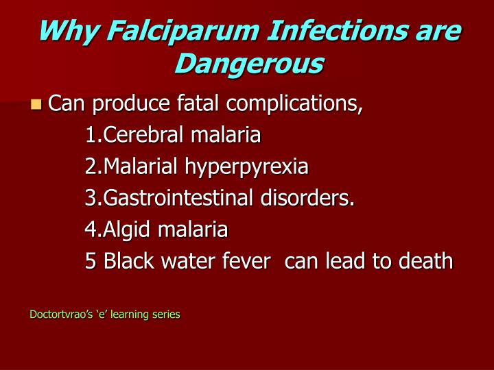 Why Falciparum Infections are Dangerous