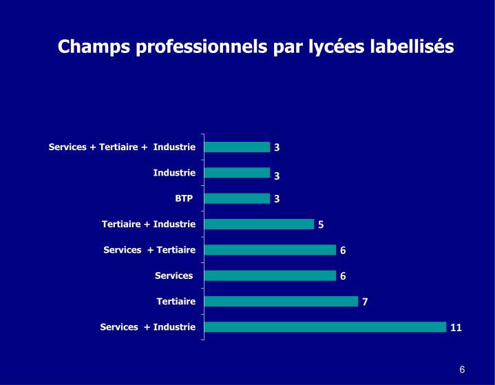 Champs professionnels par lycées labellisés